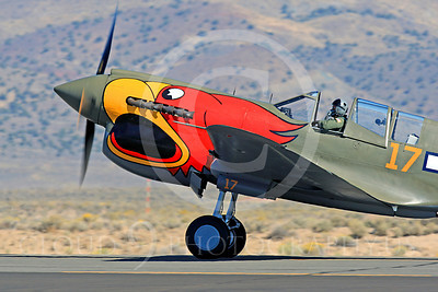 Race Airplane Parott Head 00009 Curtiss P-40 Warhawk Parott Head NL1195N at Reno air races by Peter J Mancus