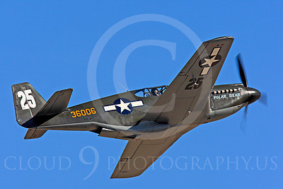 Race Airplane Polar Bear 00012 North American P-51 Mustang race airplane Polar Bear N51Z at Reno air races by Peter J Mancus