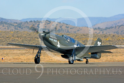 Race Airplane Polar Bear 00007 North American P-51 Mustang race airplane Polar Bear N51Z at Reno air races by Peter J Mancus