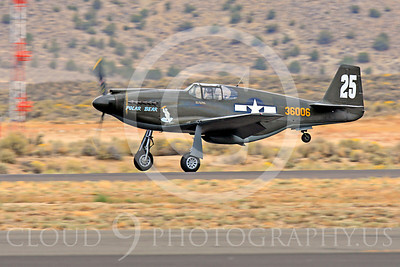 Race Airplane Polar Bear 00005 North American P-51 Mustang race airplane Polar Bear N51Z at Reno air races by Peter J Mancus