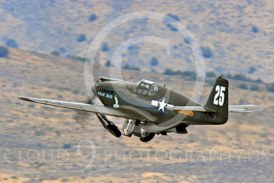 Race Airplane Polar Bear 00038 North American P-51 Mustang race airplane Polar Bear N51Z at Reno air races by Peter J Mancus