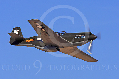 Race Airplane Polar Bear 00020 North American P-51 Mustang race airplane Polar Bear N51Z at Reno air races by Peter J Mancus