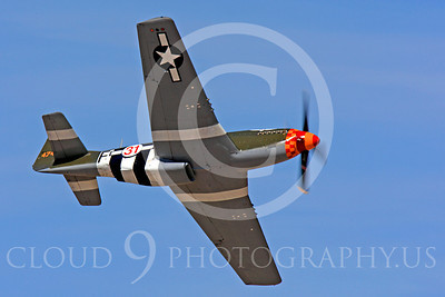 Race Airplane Speedball Alice 00006 North American P-51 Mustang race airplane Speedball Alice at Reno air races by Peter J Mancus