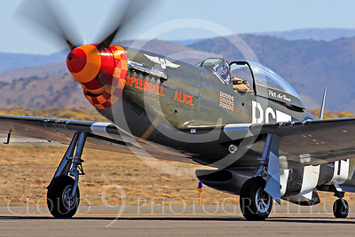 Race Airplane Speedball Alice 00063 North American P-51 Mustang race airplane Speedball Alice at Reno air races by Peter J Mancus