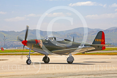 WB - P-63 00013 Bell P-63 Kingcobra Pretty Polly by Peter J Mancus