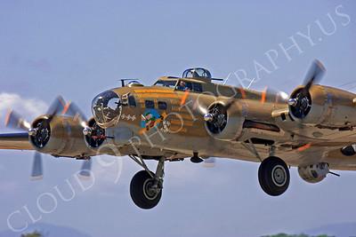 CUNWB 00160 Boeing B-17G Flying Fortress Nine O Nine by Peter J Mancus