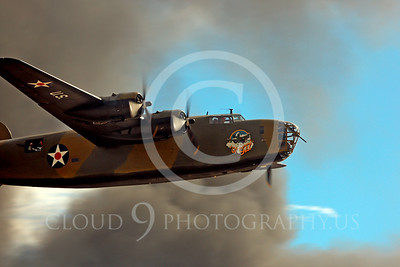 WB-B-24 00004 Consolidated B-24 Liberator by Peter J Mancus