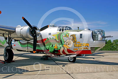 NA 00027 Dragon on Consolidated B-24 Liberator by Peter J Mancus