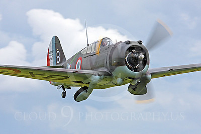 WB - Curtiss Hawk 75 00004 Curtiss Hawk 75 French Air Force by Peter J Mancus
