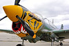 SM-P-40 016 A static tiger head color scheme sharkmouth Curtiss P-40 Warhawk American World War II era fighter warbird at Chino Planes of Fame 2016 airshow warbird picture by Peter J  Mancus