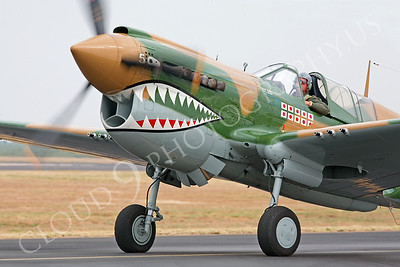 SM 00001 Curtiss P-40 Warhawk WARBIRD by Peter J Mancus