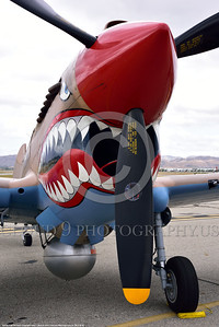 SM-P-40 003 A static sharkmouth Curtiss P-40 Warhawk American World War II era fighter warbird at Chino Planes of Fame 2016 airshow warbird picture by Peter J  Mancus tif