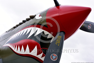 SM-P-40 002 An artistic angle and close up of a static olive drab color scheme sharkmouth Curtiss P-40 Warhawk American World War II era fighter warbird at Chino Planes of Fame 2016 airshow warbird picture by Peter J  Mancus
