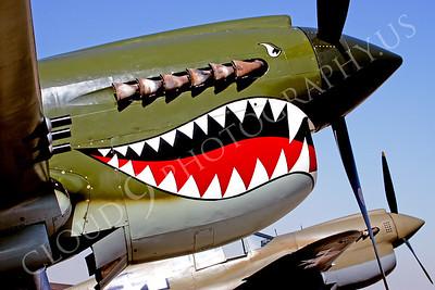 SM 00073 Curtiss P-40 Warhawk WARBIRD by Peter J Mancus