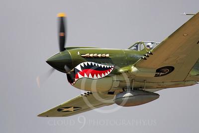 SM 00010 Curtiss P-40 Warhawk WARBIRD by Peter J Mancus