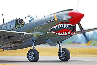 CUNWB 00115 Curtiss P-40 Warhawk by Peter J Mancus