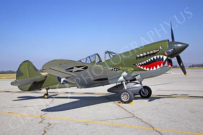 SM 00055 Curtiss P-40 Warhawk WARBIRD by Peter J Mancus