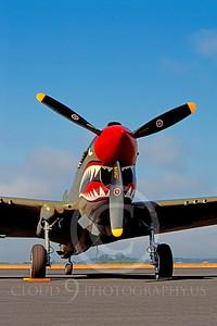 SM 00041 Curtiss P-40 Warhawk WARBIRD by Peter J Mancus