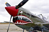 SM-P-40 012 A static olive drab color scheme sharkmouth Curtiss P-40 Warhawk American World War II era fighter warbird at Chino Planes of Fame 2016 airshow warbird picture by Peter J  Mancus tif