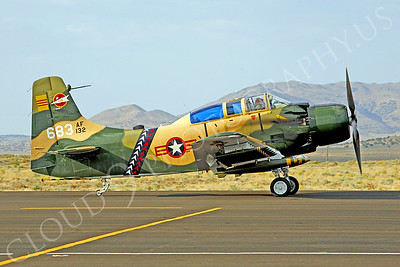 WB - 00009 Douglas A-1 Skyraider South Vietnamese Air Force by Peter J Mancus
