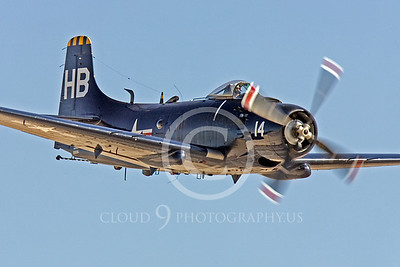 WB-A-1 00030 Douglas A-1 Skyraider by Peter J Mancus