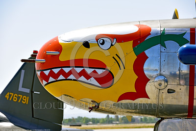 SM-A-26 016 A close up of the colorful nose of a sharkmouth Douglas A-26 Invader warbird picture by Peter J  Mancus