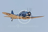 Douglas SBD Dauntless Warbird Airplane Pictures :