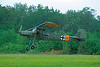 Fieseler Fi 156 Storch Warbird Airplane Pictures :