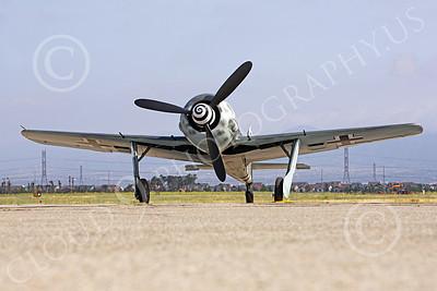 WB - Focke-Wulf Fw 190 00049 A frontal static Focke-Wulf Fw 190 German WWII era fighter airplane picture, by Peter J Mancus