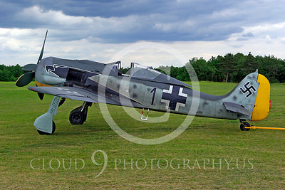 WB - Focke-Wulf Fw 190 00011 Focke-Wulf Fw 190 German World War II fighter warbird by Stephen W D Wolf