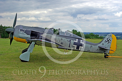 WB - Focke-Wulf Fw 190 00009 Focke-Wulf Fw 190 German World War II fighter warbird by Stephen W D Wolf