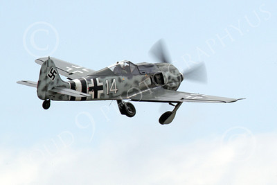 WB - Focke-Wulf Fw 190 00022 A flying Focke-Wulf Fw 190 German WWII era warbird fighter retracts its under carriage, airplane picture, by Peter J Mancus