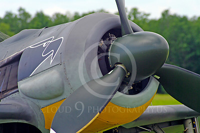 WB - Focke-Wulf Fw 190 00003 Focke-Wulf Fw 190 German World War II fighter warbird by Stephen W D Wolf