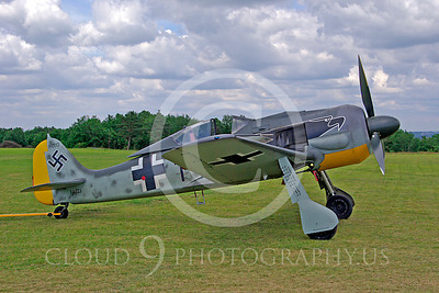 WB - Focke-Wulf Fw 190 00005 Focke-Wulf Fw 190 German World War II fighter warbird by Stephen W D Wolf