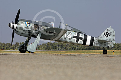 WB - Focke-Wulf Fw 190 00025 A static Focke-Wulf Fw 190 German WWII era fighter airplane picture, by Peter J Mancus