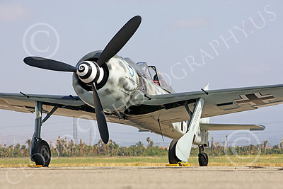 WB - Focke-Wulf Fw 190 00019 A static Focke-Wulf Fw 190 German WWII era fighter airplane picture, by Peter J Mancus