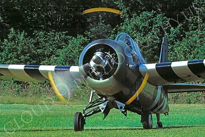 WB - 00041 Grumman F4 Wildcat British Royal Navy by Stephen W D Wolf
