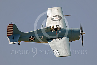 WB - Grumman F4F Wildcat 00016 Grumman F4F Wildcat US Navy warbird markings by Peter J Mancus