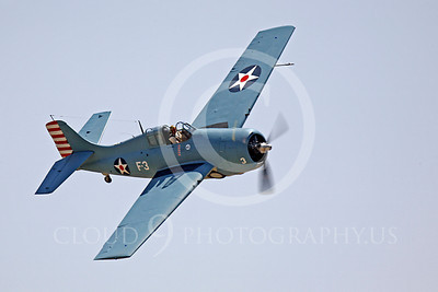 WB - Grumman F4F Wildcat 00032 Grumman F4F Wildcat US Navy warbird markings by Peter J Mancus