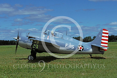 WB - Grumman F4F Wildcat 00009 Grumman F4F Wildcat US Navy warbird markings by Peter J Mancus