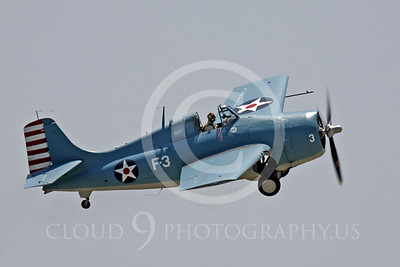 WB - Grumman F4F Wildcat 00020 Grumman F4F Wildcat US Navy warbird markings by Peter J Mancus