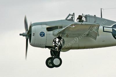 CUNWB 00112 Grumman F4F Wildcat by Peter J Mancus