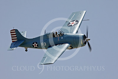 WB - Grumman F4F Wildcat 00038 Grumman F4F Wildcat US Navy warbird markings by Peter J Mancus
