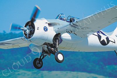 CUNWB 00006 Grumman F4F Wildcat by Peter J Mancus