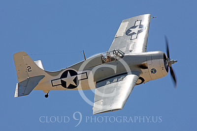 WB-F4F 00002 Grumman F4F Wildcat US Navy by Peter J Mancus