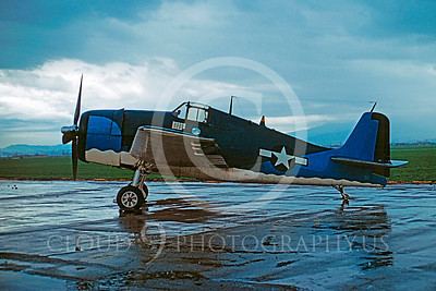 WB - Grumman F6F Hellcat 00029 Grumman F6F Hellcat by Peter J Mancus