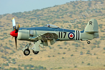 WB - 00002 Hawker Sea Fury Canadian Armed Forces by Peter J Mancus