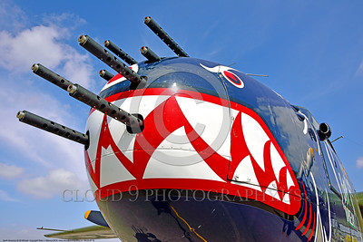"SM-B-25 019 A close up of the colorful nose of a sharkmouth North American B-25 Mitchell ""BETTY'S DREAM"" World War II era warbird picture by Peter J  Mancus"