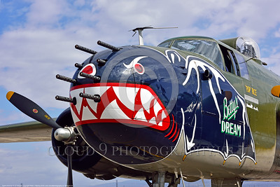 "SM-B-25 024 A close up of the colorful nose of a sharkmouth North American B-25 Mitchell ""BETTY'S DREAM"" World War II era warbird picture by Peter J  Mancus"