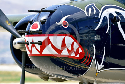 "SM-B-25 021 A close up of the colorful nose of a sharkmouth North American B-25 Mitchell ""BETTY'S DREAM"" World War II era warbird picture by Peter J  Mancus"